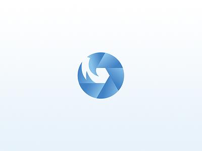 Truemotion motion icon branding logo design design logo