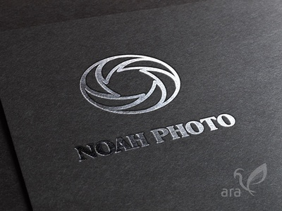 Photography logo vector typography type logo lettering flat design branding