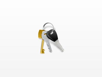 Keys icon keys keychain