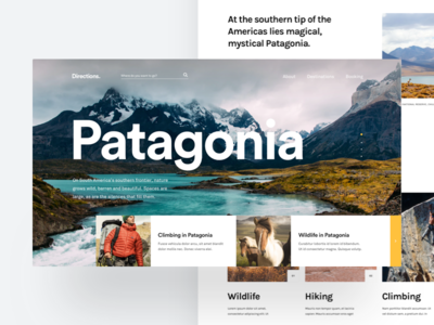 Directions - Home Page 🗺 patagonia travel complexion reduction minimal flat type typography ux ui web design