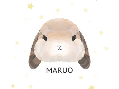 Maruo