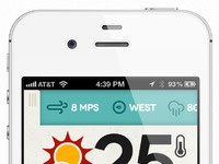 Dribbble weather app mobile details big