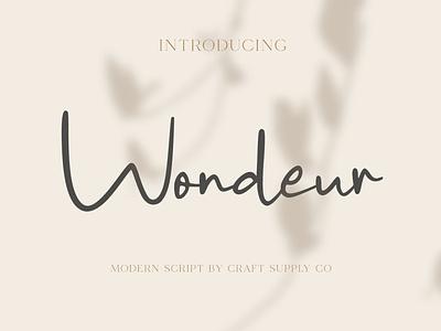 Wondeur - Modern Script Font sans serif vintage retro elegant logo brush creative lettering typeface font
