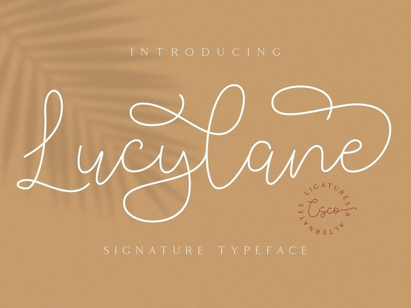 Lucylane Signature Font - Free download photography pastel europe clean vintage sans serif retro logo font ux typography branding vector design sans creative elegant lettering brush typeface