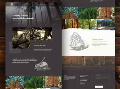 Specialist timber homepage