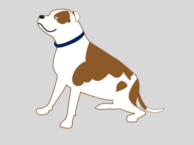 Horatio good boy white brown spotted happy dog pitbull