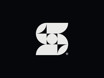 WW019 - Letter S Logo logotype icon minimal lettering logos logo symbol brand identity branding s letter s logo letter s