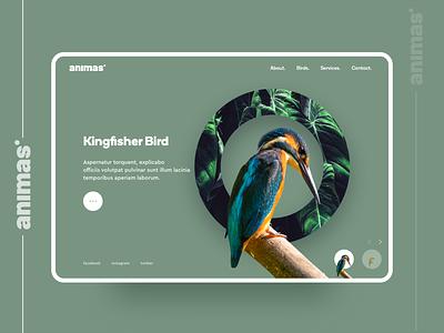 Animas. main screen concept animals illustration business web portfolio denisbujupaj agency web design minimal creative ux ui design