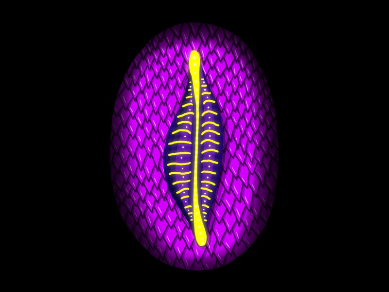 0 psychedelic creature slug scales organic alien neon nature design glow handlettering 36 days of type lettering illustration hand lettering