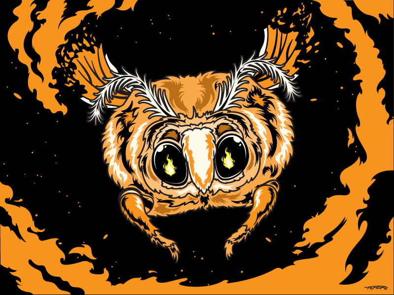 The moth & the flame insect animal night wings illustration eyes love orange flame fire moth vector