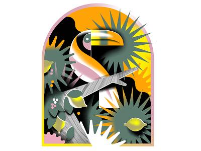 the Toucan vibrant illustration tropical jungle grain geometric bird toucan animals