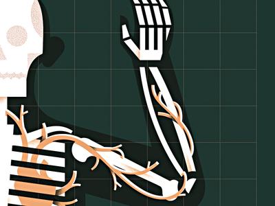 Dem Bones biology science cardio medical skull bones blood heart anatomy skeleton