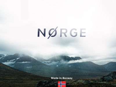 Norge visual scandinavian minimal natural raw key visual