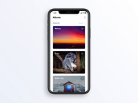 Image Gallery Concept