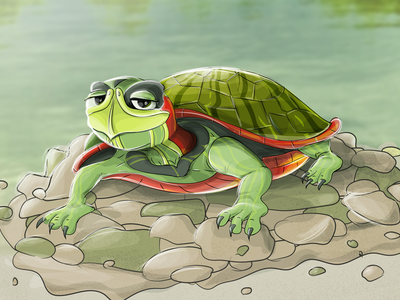 Cory the turtle character turtle power turtle character design character creation cell shading vector artwork vector art conceptart character concept character art illustration