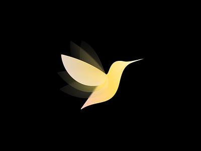 Bird bird branding logo logo design