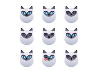 Siamese Cat - Emotions