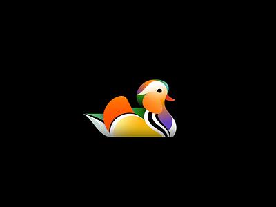 Mandarin Duck duck mandarin duck bird illustration