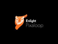 Enlight Logo System