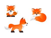 Fox poses 3
