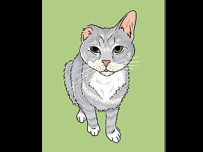 Winnie cat drawing cat illustration kitty cat portrait procreate illustration graphic design