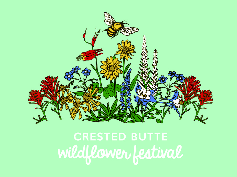 Crested Butte Wildflower Festival paintbrush honey bee columbine colorado crested butte festival wildflowers illustration flowers
