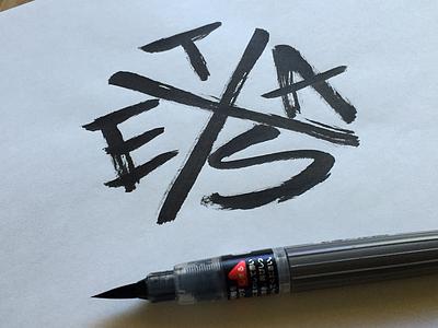 TEXAS lettering typography texas flag hardcore monogram t-shirt cotton bureau print brushpen