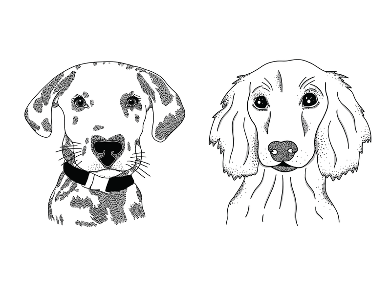 Puppers WIP doggy pattern illustration digital texture line art digital illustration art dog illustration dalmation weenie dog dog illustration puppers