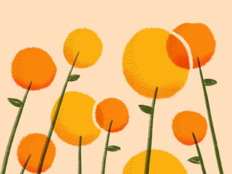 All the flowers texture yellow orange flowers illustration illustration flowers