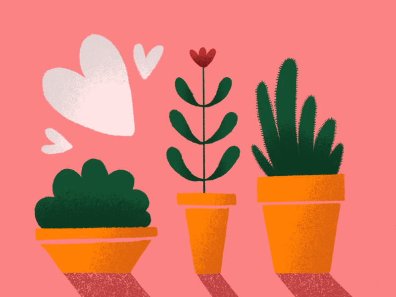 three planters shading true grit texture supply pink heart flower cactus texture illustration planter pot plant