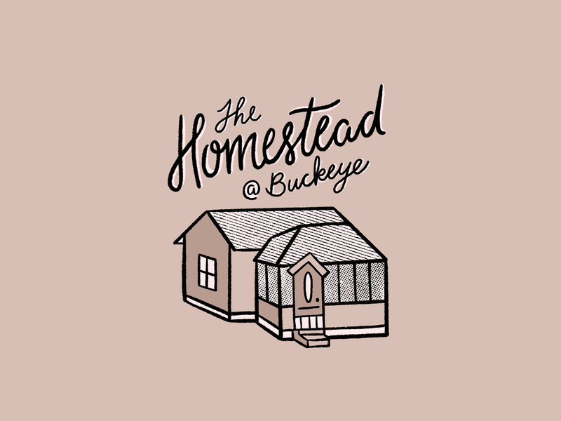The Homestead @ Buckeye script typography handdrawntype door roof house illustration illustration procreate textures branding home farmhouse texture logo