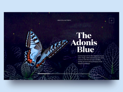 Butterfly Species Landing Page graphic animal butterflies orange blue header landing page forest dark butterfly typography motion design vietnam interaction ux ui animation