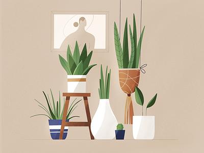 Plants interior room flowers plant plants design texture characters vector shape flat 2d illustration