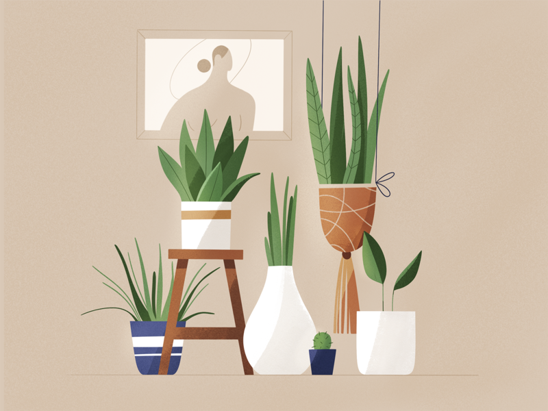 Plants interior room flowers plant plants design texture characters vector shape flat 2d illustration