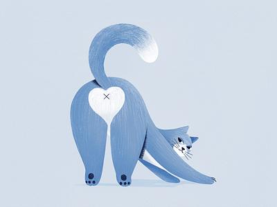 Cat pencil animal animals cat procreate design character texture vector shape flat 2d illustration