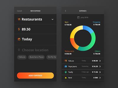 Expenses Control App android ios mobile design ux ui app expenses