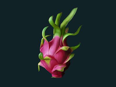 Dragon Fruit digital painting dragon fruit illustration fruit