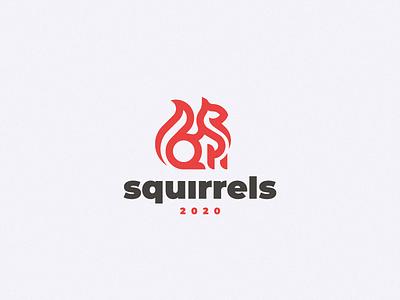Squirrel squirrel concept logo