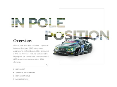 Overview module bold type white clean race car ui website