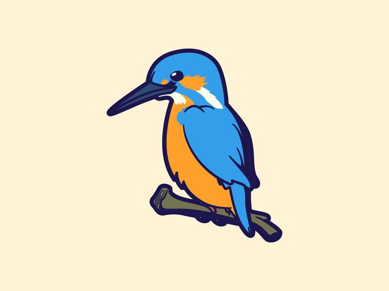 Kingfisher Bird bird illustration bird mascot bird icon bird logo cartoon animal logo fun mascot flat icon icon design bold character-design vector illustrator illustration design character 2d