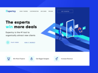 Expertcy Landing Page Concept