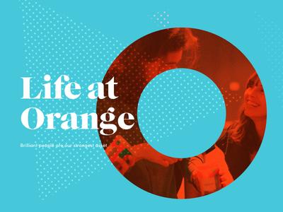 OD Website dots hero banner colourful serif