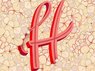 H - Hydrangea alphabet hydrangea illustration floral create lettering hand lettering typography script handwriting calligraphy cursive