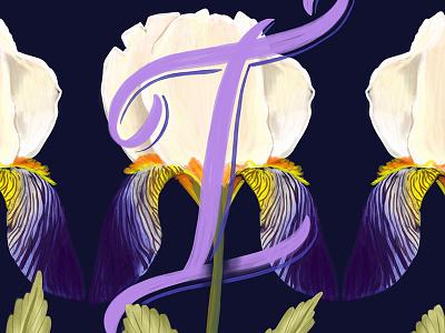 I - Iris alphabet iris illustration floral create lettering hand lettering typography script handwriting calligraphy cursive