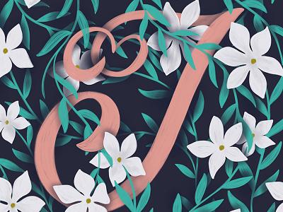 J - Jasmine cursive calligraphy handwriting script typography hand lettering lettering create floral illustration jasmine alphabet