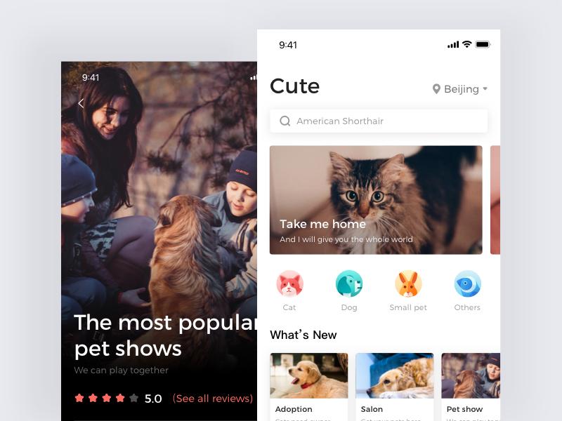 home page of Adoption app adoption cat dog pet