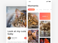 Moments page of Adoption App pet app dog cat adoption