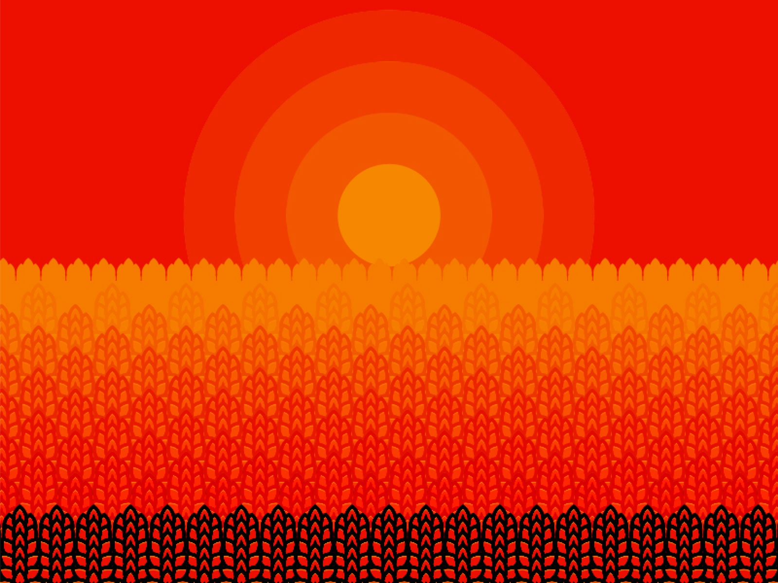 Amber Waves Of Grain By Jesse Mcnelley On Dribbble