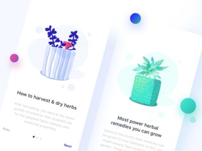 Herb illustration app