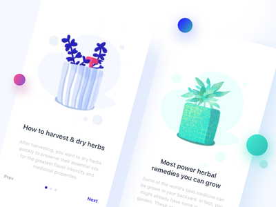 Herb illustration app prev next blue green herbal herb iphonex illustration icon mobile app ux ui